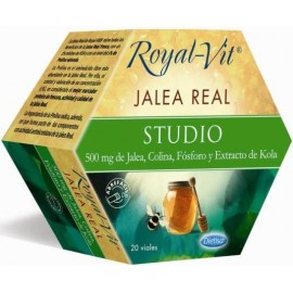 JALEA REAL STUDIO 20 AMP